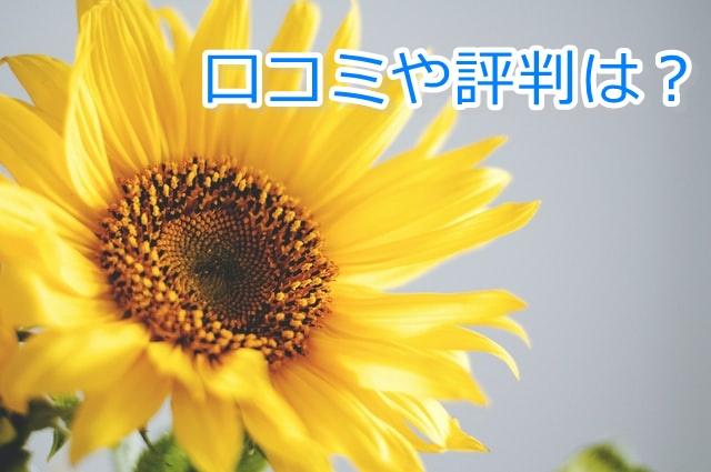 エティーク シャンプー 口コミ/楽天の口コミ