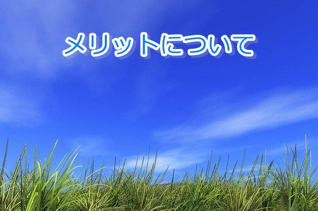 カダソンシャンプー 口コミ/メリット